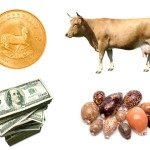 Evolution of Money: From Ivory Tusks to Heavy Metals