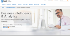 Logo of SAS Business Intelligence