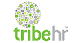 TribeHR reviews