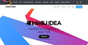 Logo of IntelliJ Idea