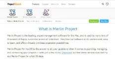 Logo of Merlin Project