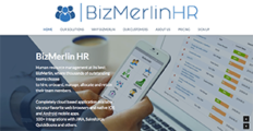 BizMerlin screenshot