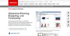 Oracle Hyperion Planning screenshot