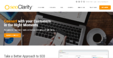 seoClarity screenshot