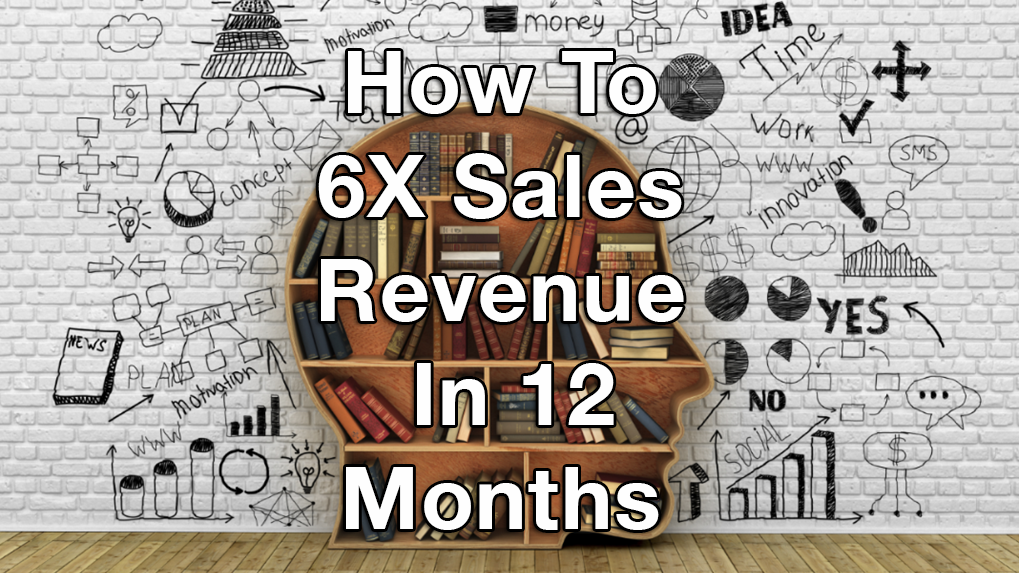How To 6X Sales Revenue In 12 Months