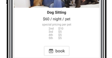 Easy Busy Pets dashboard 3