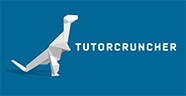 TutorCruncher reviews