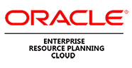 Oracle ERP Cloud reviews